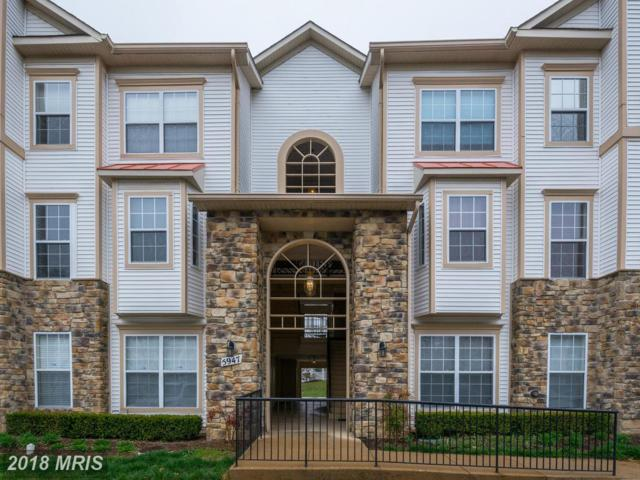 5947 Founders Hill Drive #101, Alexandria, VA 22310 (#FX10285431) :: Charis Realty Group