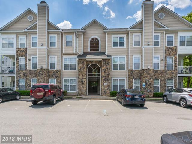 5932 Founders Hill Drive #202, Alexandria, VA 22310 (#FX10286005) :: Provident Real Estate