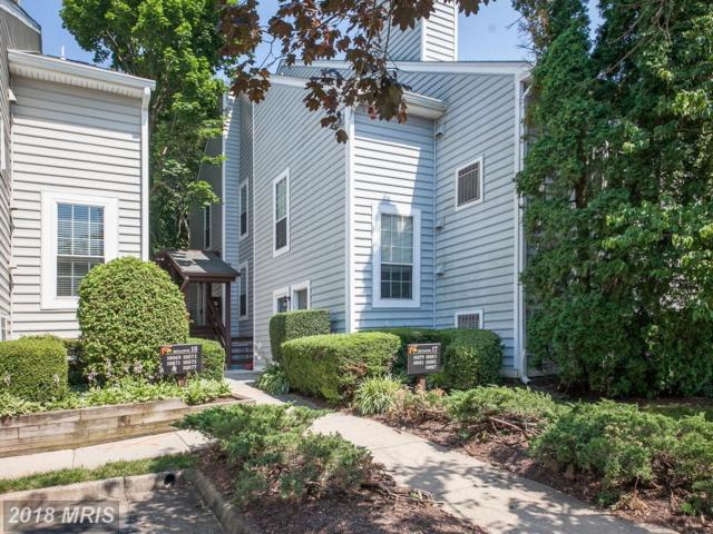 10083 Oakton Terrace Road #10083, Oakton, VA 22124 (#FX10287971) :: Green Tree Realty