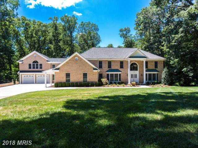1070 Dougal Court, Great Falls, VA 22066 (#FX10288073) :: Circadian Realty Group