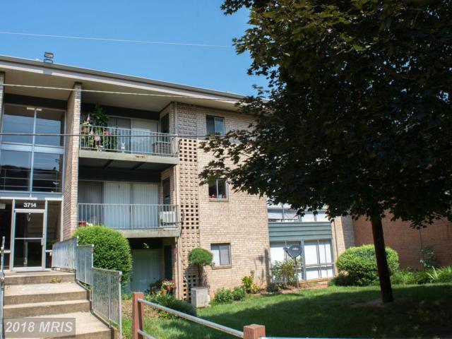 3714 Rosser Street #302, Alexandria, VA 22311 (#FX10288507) :: Keller Williams Pat Hiban Real Estate Group