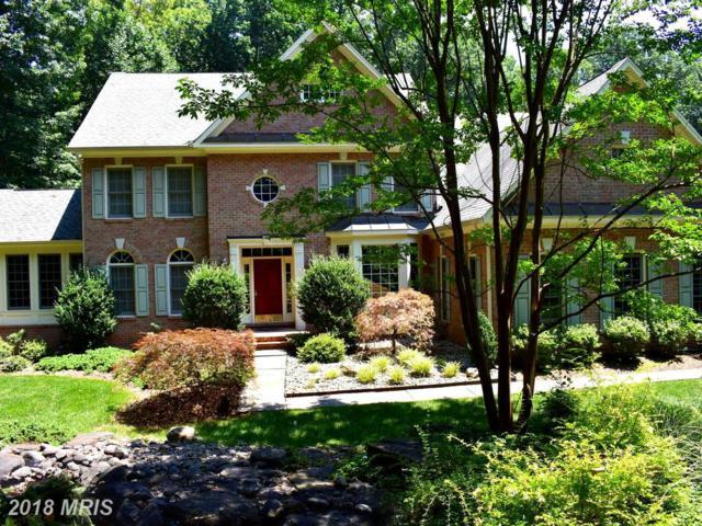 11629 Pine Tree Drive, Fairfax, VA 22033 (#FX10289025) :: The Vashist Group