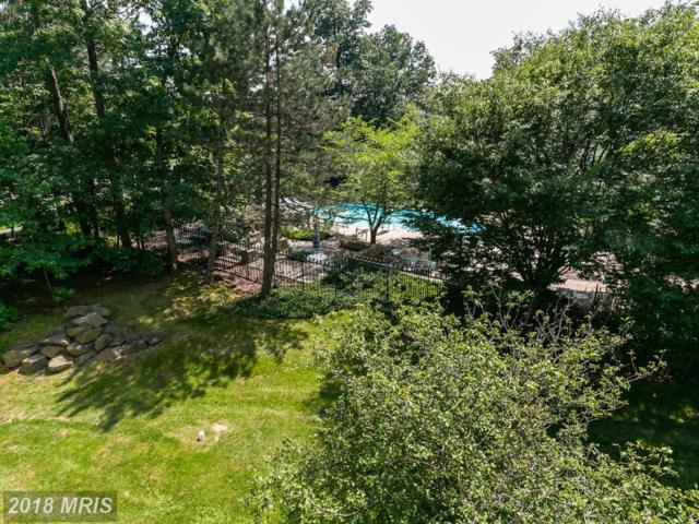 4408 Helmsford Lane #305, Fairfax, VA 22033 (#FX10291388) :: Keller Williams Pat Hiban Real Estate Group