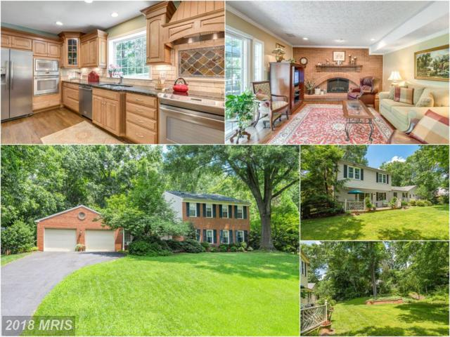 12183 Holly Knoll Circle, Great Falls, VA 22066 (#FX10294940) :: Provident Real Estate