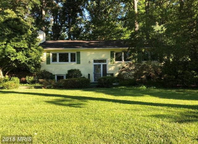 10613 Good Spring Avenue, Great Falls, VA 22066 (#FX10295192) :: Provident Real Estate
