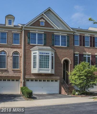 12455 Blissful Valley Drive, Fairfax, VA 22033 (#FX10295643) :: Provident Real Estate