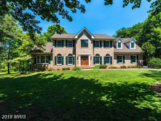 607 Kentland Drive, Great Falls, VA 22066 (#FX10295651) :: Provident Real Estate