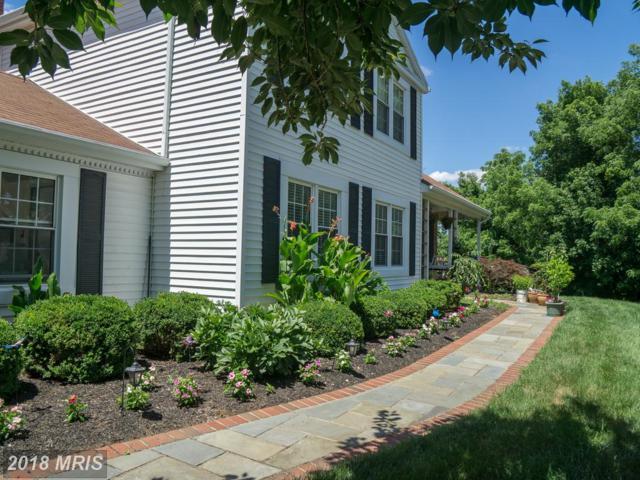 4312 General Kearny Court, Chantilly, VA 20151 (#FX10296800) :: Provident Real Estate