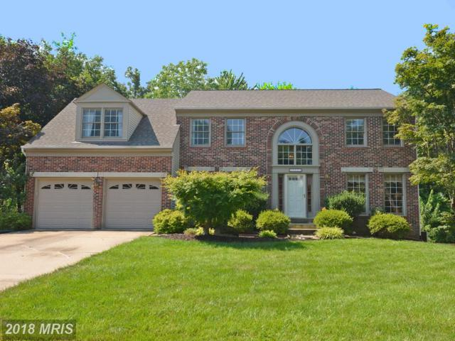 13429 Marble Rock Drive, Chantilly, VA 20151 (#FX10297152) :: The Vashist Group