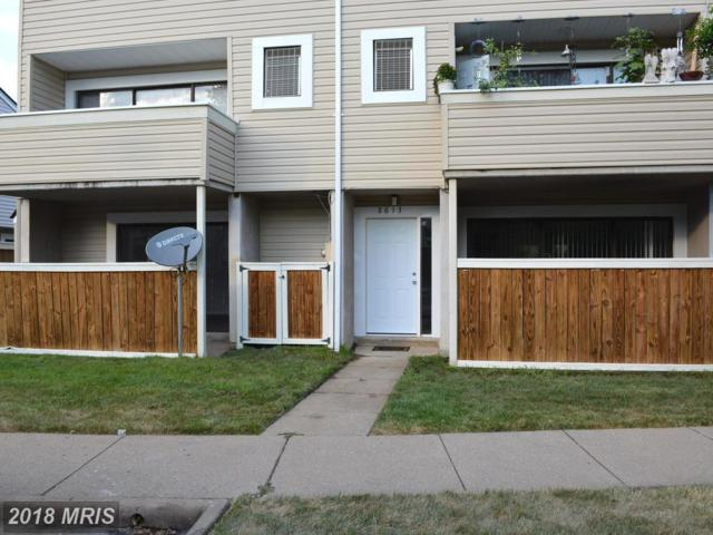 8613 Village Way 1B, Alexandria, VA 22309 (#FX10297274) :: Keller Williams Pat Hiban Real Estate Group
