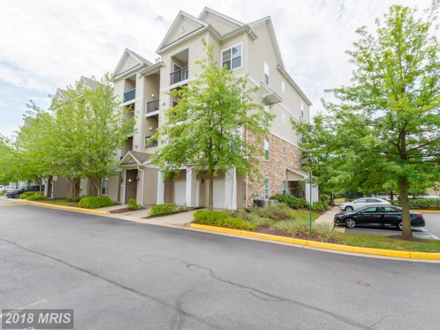 5130-K Brittney Elyse Circle K, Centreville, VA 20120 (#FX10297505) :: Charis Realty Group