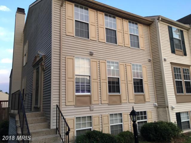13968 Winding Ridge Lane, Centreville, VA 20121 (#FX10297687) :: Provident Real Estate