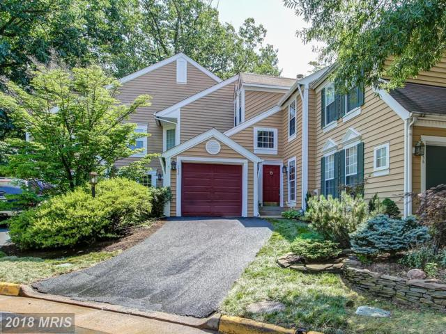 1558 Deer Point Way, Reston, VA 20194 (#FX10297944) :: Provident Real Estate