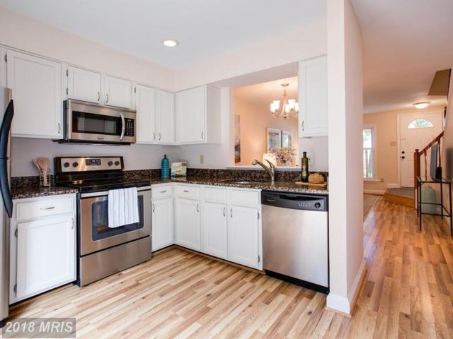 6322 Chimney Wood Court, Alexandria, VA 22306 (#FX10298174) :: Colgan Real Estate