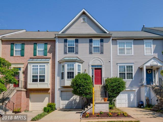 5612 Truitt Farm Court, Centreville, VA 20120 (#FX10298286) :: Provident Real Estate