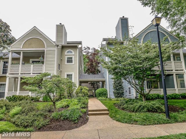 7648 Willow Point Drive #7648, Falls Church, VA 22042 (#FX10298510) :: Provident Real Estate
