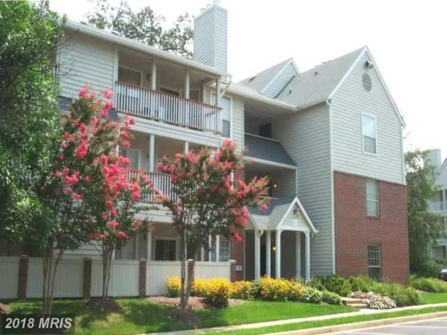 12151 Penderview Lane #2006, Fairfax, VA 22033 (#FX10298781) :: Pearson Smith Realty