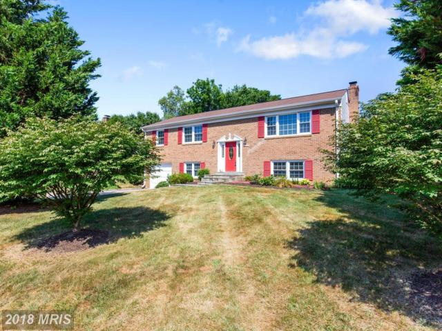 8200 Chollman Court, Alexandria, VA 22308 (#FX10299138) :: Colgan Real Estate