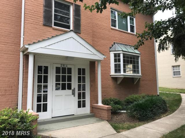 2914 Peyton Randolph Drive #102, Falls Church, VA 22044 (#FX10300349) :: Arlington Realty, Inc.