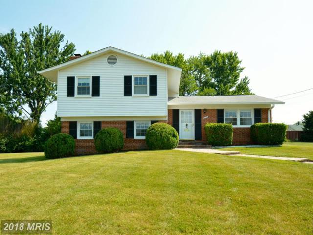 6430 Meriwether Lane, Springfield, VA 22150 (#FX10301564) :: Pearson Smith Realty