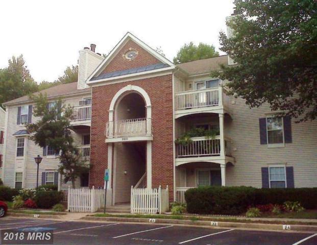 8600 Shadwell Drive #7, Alexandria, VA 22309 (#FX10301935) :: Jacobs & Co. Real Estate