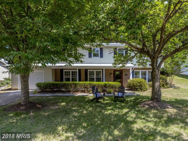 6109 Holly Tree Drive, Alexandria, VA 22310 (#FX10302204) :: Circadian Realty Group