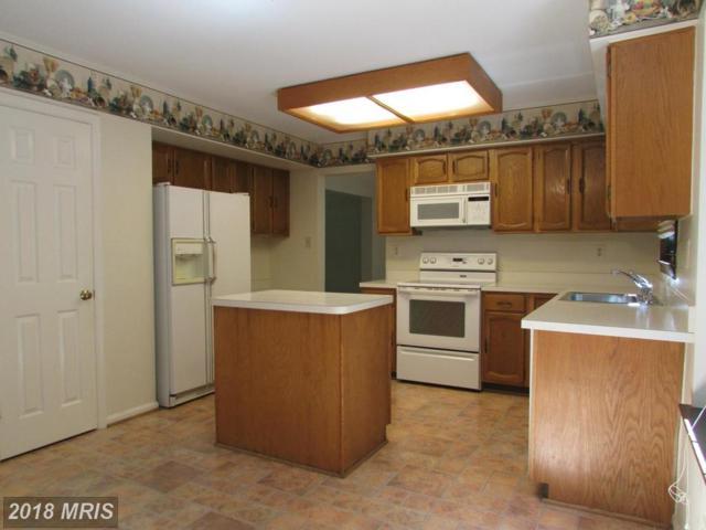 8413 Sweet Pine Court, Springfield, VA 22153 (#FX10302661) :: Pearson Smith Realty