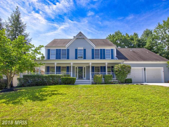 15254 Surrey House Way, Centreville, VA 20120 (#FX10304238) :: The Putnam Group