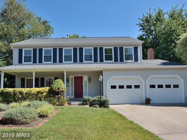 5439 Braddock Ridge Drive, Centreville, VA 20120 (#FX10304375) :: The Putnam Group