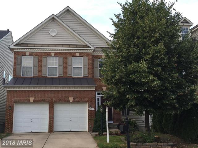 8442 Wasdale Head Drive, Lorton, VA 22079 (#FX10304459) :: Charis Realty Group