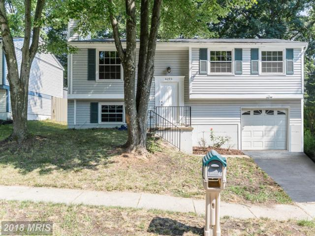 8294 Morning Dew Court, Springfield, VA 22153 (#FX10305067) :: CENTURY 21 Core Partners
