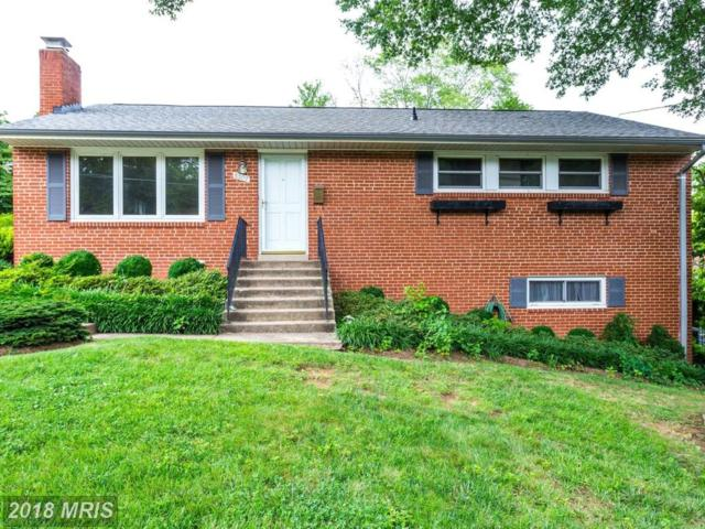 5307 Nutting Drive, Springfield, VA 22151 (#FX10312056) :: Bob Lucido Team of Keller Williams Integrity