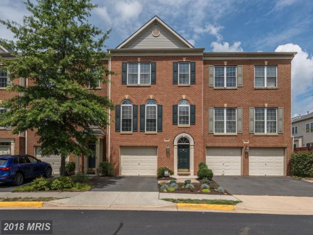 13512 Lavender Mist Lane, Centreville, VA 20120 (#FX10312827) :: Bob Lucido Team of Keller Williams Integrity