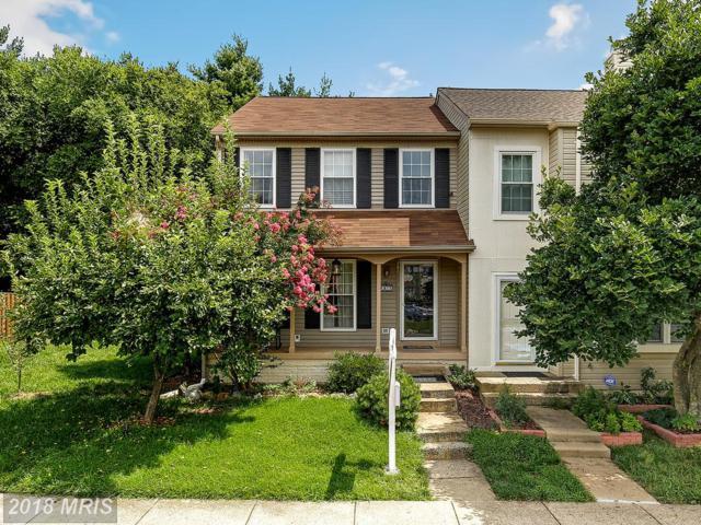 6815 Cottingham Lane, Centreville, VA 20121 (#FX10316720) :: SURE Sales Group