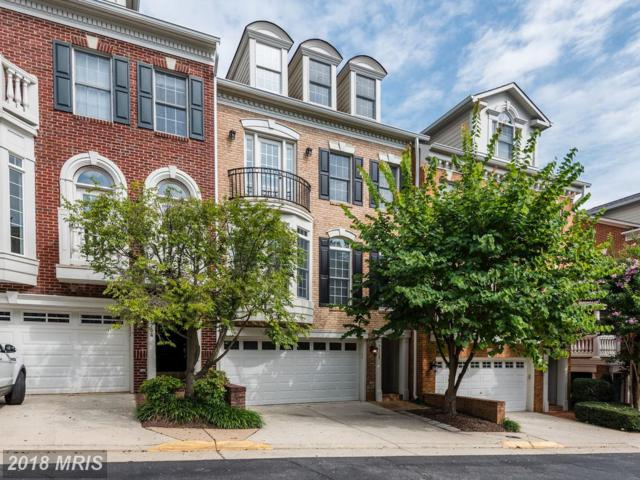 7752 Legere Court #29, Mclean, VA 22102 (#FX10317106) :: The Belt Team