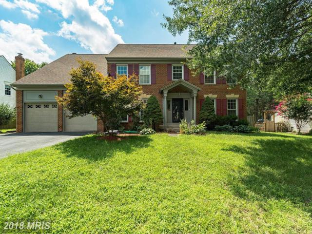13952 Valley Country Drive, Chantilly, VA 20151 (#FX10317416) :: The Vashist Group