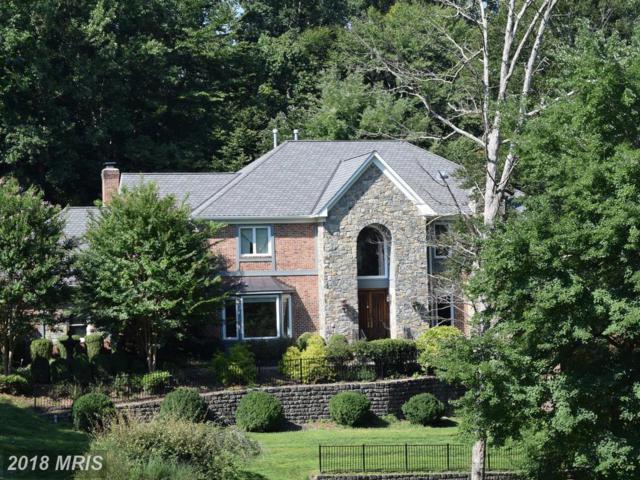 10835 Patowmack Drive, Great Falls, VA 22066 (#FX10317483) :: Great Falls Great Homes