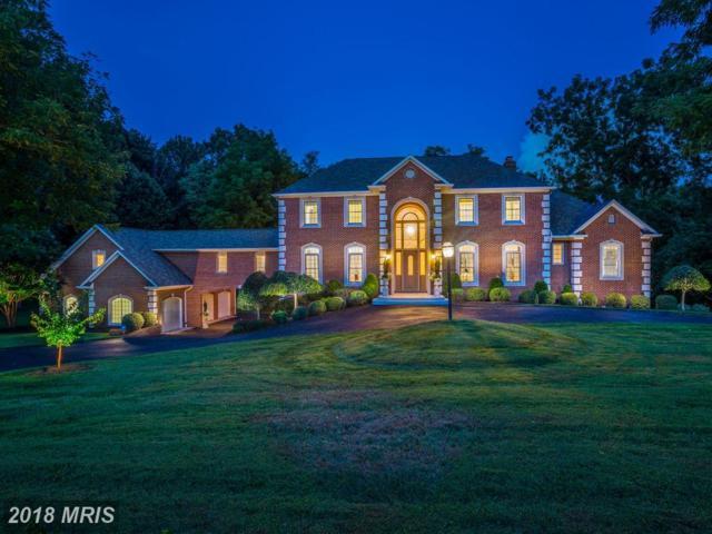 447 Seneca Road, Great Falls, VA 22066 (#FX10317678) :: Great Falls Great Homes
