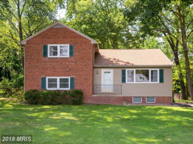6526 Terry Drive, Springfield, VA 22150 (#FX10317978) :: Colgan Real Estate