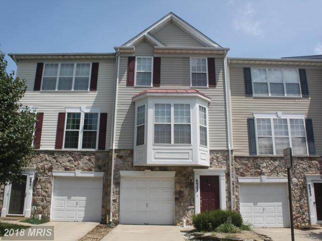 6943 Lerwick Court, Alexandria, VA 22315 (#FX10318221) :: SURE Sales Group