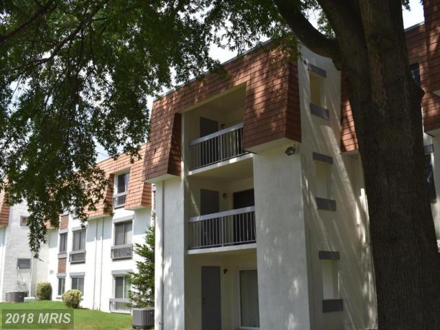 3803 Laramie Place K, Alexandria, VA 22309 (#FX10318371) :: Pearson Smith Realty