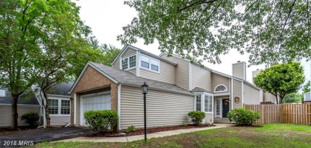 7525 Cross Gate Lane, Alexandria, VA 22315 (#FX10318409) :: Pearson Smith Realty