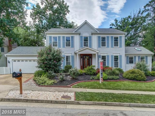 8661 Pohick Forest Court, Springfield, VA 22153 (#FX10318909) :: Tom & Cindy and Associates