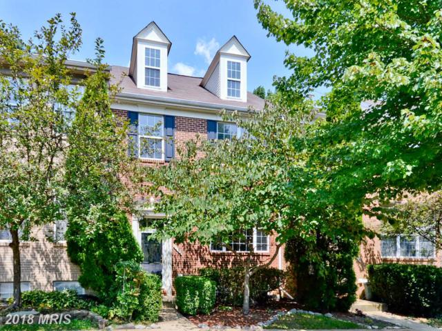 6276 Taliaferro Way, Alexandria, VA 22315 (#FX10320444) :: Pearson Smith Realty