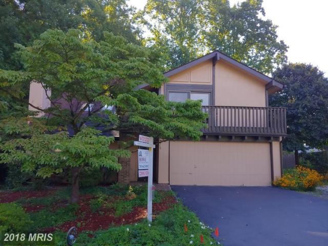 5919 Veranda Drive, Springfield, VA 22152 (#FX10321901) :: Browning Homes Group
