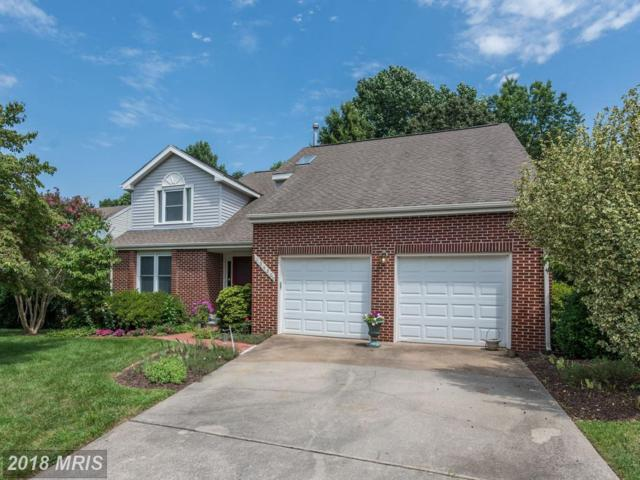 13420 Cavalier Woods Drive, Clifton, VA 20124 (#FX10322403) :: Browning Homes Group