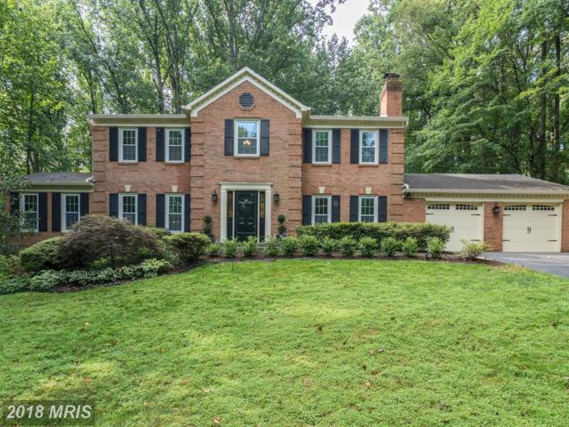 11121 Clara Barton Drive, Fairfax Station, VA 22039 (#FX10322679) :: The Greg Wells Team
