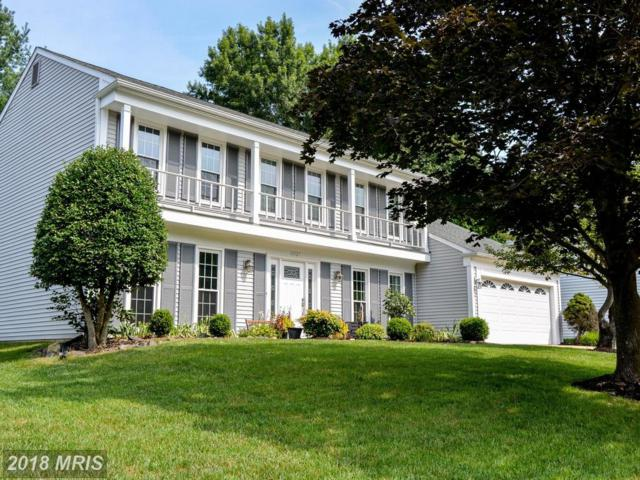 13527 Point Pleasant Drive, Chantilly, VA 20151 (#FX10323803) :: Network Realty Group