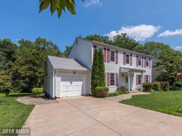 9521 Wallingford Drive, Burke, VA 22015 (#FX10323923) :: Fine Nest Realty Group