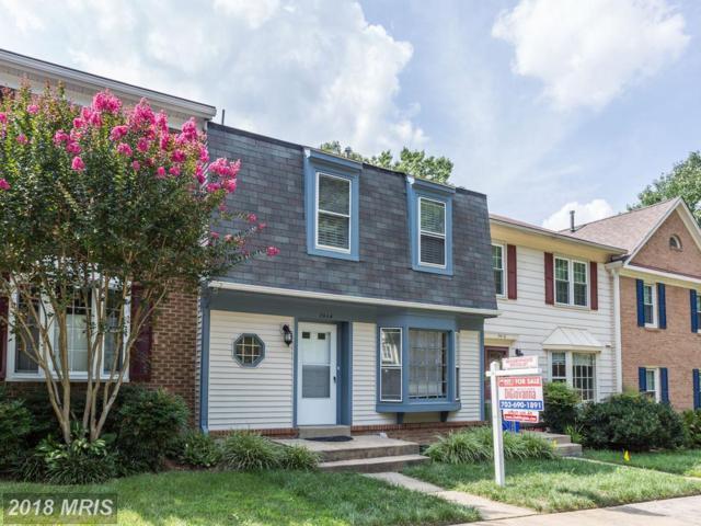 7414 Spring Tree Drive, Springfield, VA 22153 (#FX10323996) :: Browning Homes Group